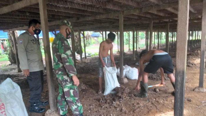 Usir Hama Lalat, Pengelola Peternakan Ayam di Kuala Batee Abdya Lakukan Penyemprotan Kandang