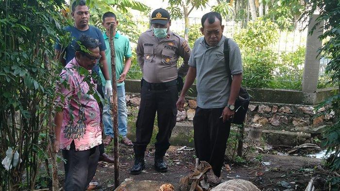 Petani Lhoknga Temukan Senjata Api Rakitan Jenis Pelontar di Kebun Miliknya