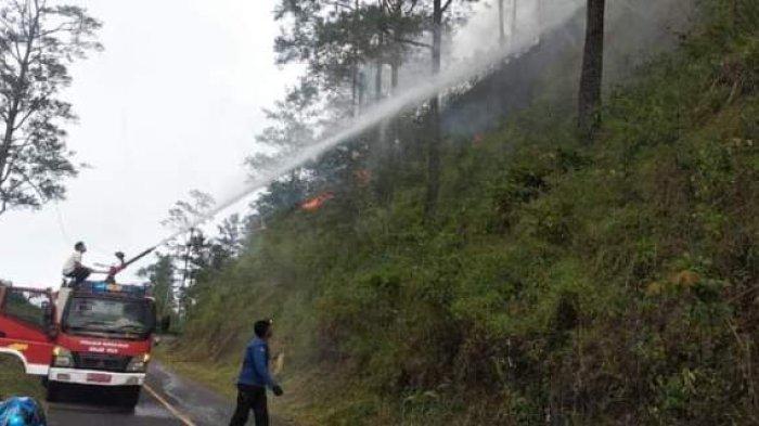 15 Hektare Hutan & Lahan di Bener Meriah Terbakar, BPBD, TNI/Polri dan Warga Berjibaku Padamkan Api