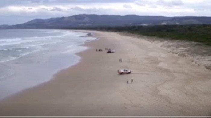 Peselancar Australia Tewas Digigit Ikan Hiu