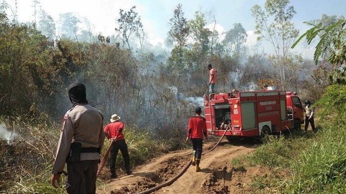 Hari Ini, Ada Empat Hektare Lahan di Aceh Besar Terbakar, Petugas Sulit Terobos Lokasi