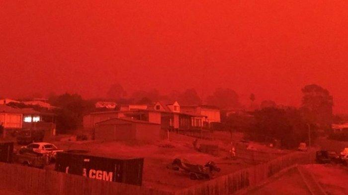 Hutan Australia Terbakar, 2.000 Rumah Hancur, 24 Orang Tewas, Aktris Hollywood Beri Donasi