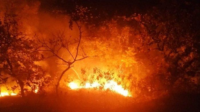 Lagi, Kebakaran Lahan Terjadi di Lhokseumawe, Pemadaman Dilakukan Secara Manual Gara-gara Ini