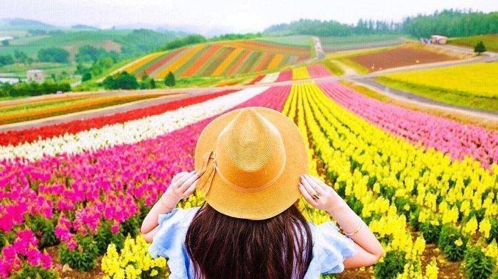 Negara dengan Taman Bunga Terbaik di Dunia, Mulai dari Belanda hingga Denmark