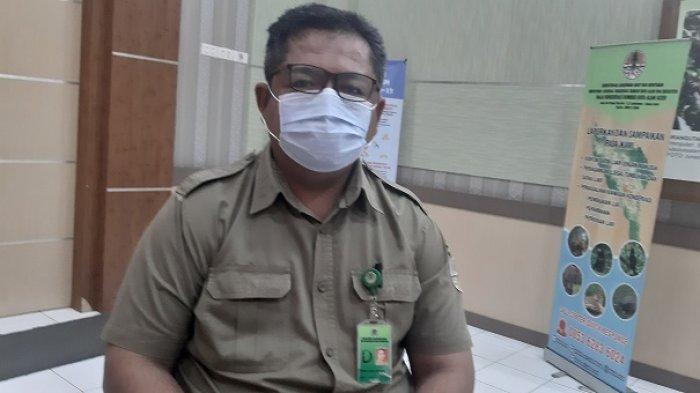Polisi Gulung Pelaku Perburuan Gading Gajah, BKSDA: Ini Kasus Pertama di Aceh Jaya dan Kedua di Aceh