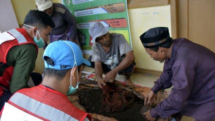 Warga Suak Nie Aceh Barat Temukan Kerangka Mayat Korban Tsunami, Diduga Wanita