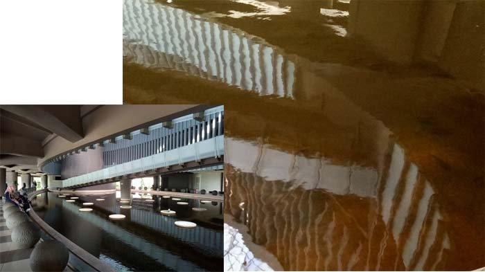 Anggota DPRK Banda Aceh Sorot Kebersihan Museum Tsunami, Kolam Ikan Keruh Berlumut