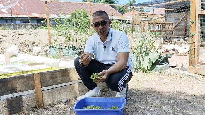 Kolonel Reki, Aslog Kasdam IM yang Hobi Budidaya Maggot