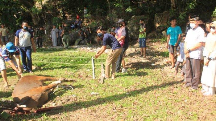 Dandim Kurbankan Satu Ekor Sapi di Asrama Kodim 0107/Aceh Selatan