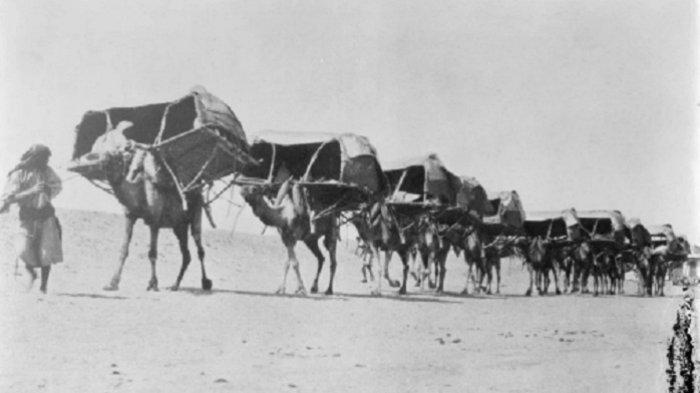 Sejarah Perjalanan Haji dari Darat, Konvoi Unta, Kuda dan Keledai Sampai Kendaraan Canggih