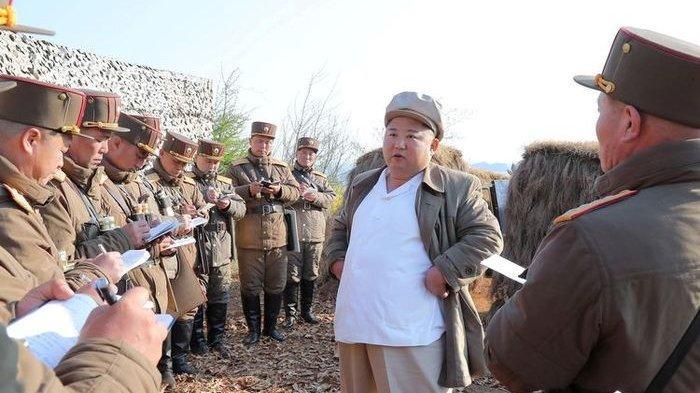 Mulai Krisis Pangan, Harga Pisang di Korea Utara Rp 640.000 per Kilogram atau 91.000 per Buah