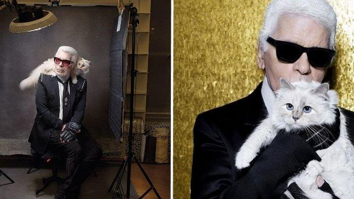 Karl Lagerfeld Meninggal Dunia, Sang Kucing dapat Warisan Harta Senilai Rp5,3 Triliun