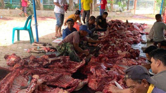 Panitia sedang menata daging kurban yang akan dibagikan kepada masyarakat Gampong Geuceu Komplek, Kota Banda Aceh.