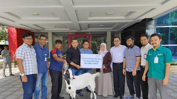Bank Mandiri Syariah Aceh Salurkan Hewan Kurban