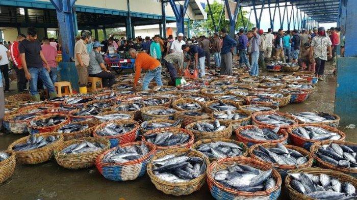 Harga Ikan di PPS Lampulo Turun