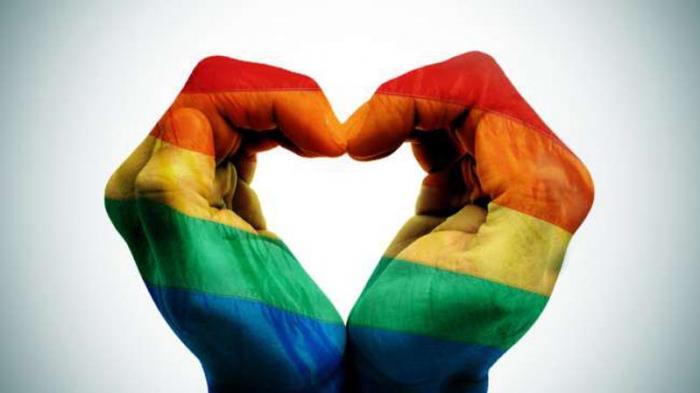 Illiza Sebut Pelaku LGBT di Banda Aceh Capai 500 Orang