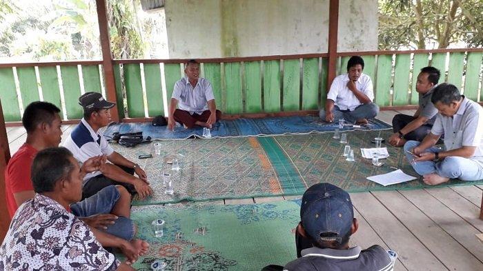 Pengelolaan Dana Replanting di Aceh Tamiang Dinilai tak Transparan