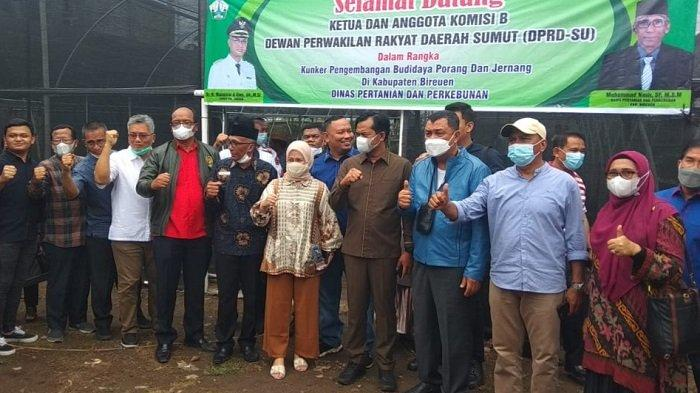 Komisi B DPRD Sumut Kunjungi Lokasi Penanaman Porang dan Jernang di Bireuen