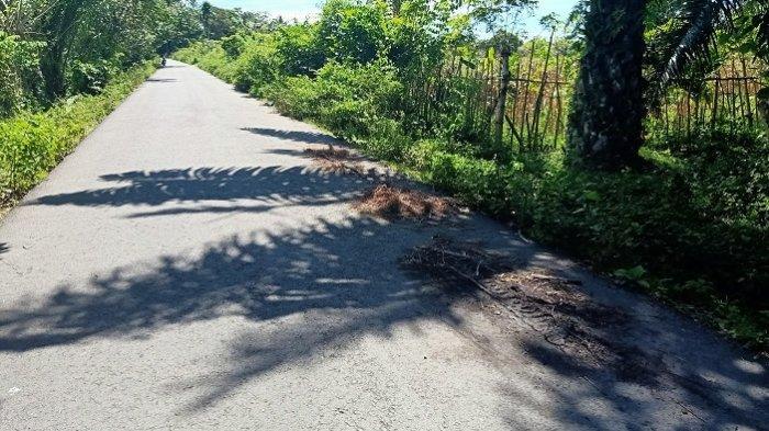 Ini Kesaksian Petani di Lokasi Putus Tangan Perawat RSUTP Abdya