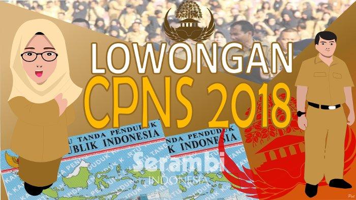 Info CPNS 2018 - Aceh Tamiang Terima 224 CPNS, Ini Perkiraan Jadwal dan Kisi-kisi Soal