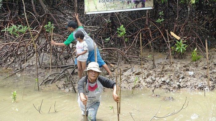 Peringati Hari Lingkungan Hidup Sedunia, Bale Juroeng Tanami 1.000 Mangrove