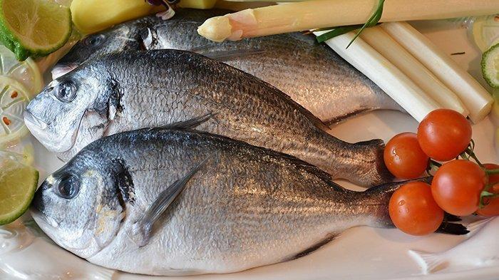 Ini 9 Manfaat Luar Biasa Makan Ikan, Bisa Turunkan Risiko Serangan Jantung dan Stroke