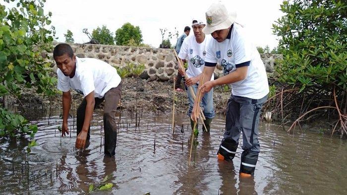 Hutan Mangrove Langsa Akan Diajukan Masuk Program Strategis Wisata Nasional