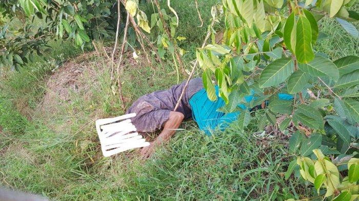 Bunuh Pensiunan PIM, Warga Bireuen Ditangkap di Beutong, Satu Pelaku Kabur Sedang Diburu Polisi