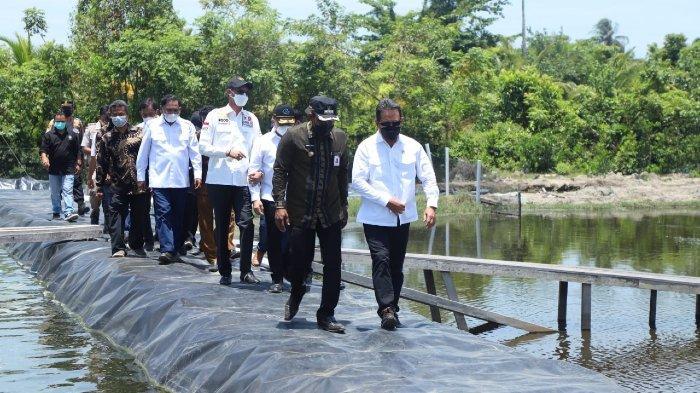 KKP Siap Jadikan Aceh Timur Sebagai Daerah Produsen Udang Vaname