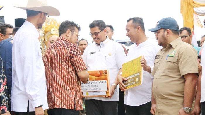 Mentan Bantu Aceh Bibit Jagung
