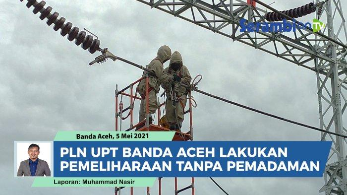 Pohon Tumbang Dominasi Gangguan Arus Listrik di Aceh, Begini Langkah Antisipasi PLN