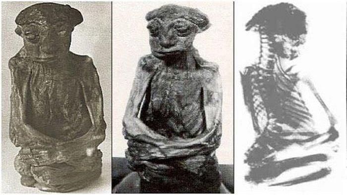 Misteri Mumi Kerdil Gunung San Pedro Hingga Kini Belum Terpecahkan