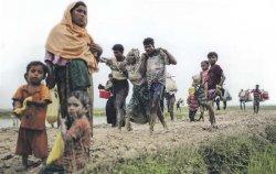Dompet Peduli Rohingya