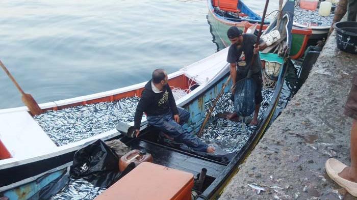 50 Nelayan Ikut Sosialisasi UU PPN-PI-PG