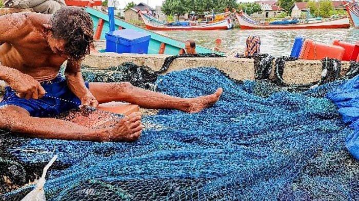 Hasil Tangkapan Nelayan Minim, Harga Ikan Naik di Pidie Jaya
