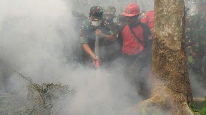 Panglima TNI Ikut Padamkan Kebakaran Hutan di Bengkalis Riau, Hadi: Petugas Kekurangan Alat Pemadam