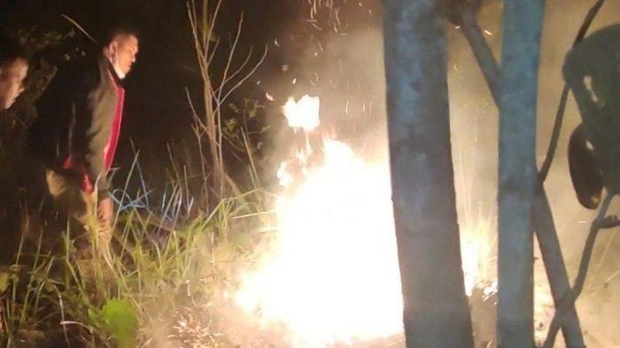 Lahan Terbakar di Peusangan, Petugas Damkar dan Warga Berjibaku Padamkan Api