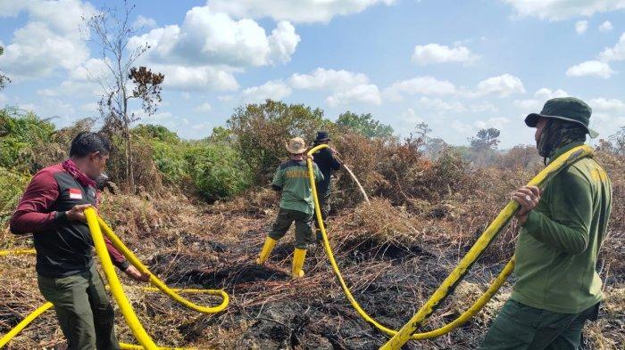 10 Hektar Lebih Lahan Gambut Aceh Barat Terbakar, Pemadaman Masih Dilakukan