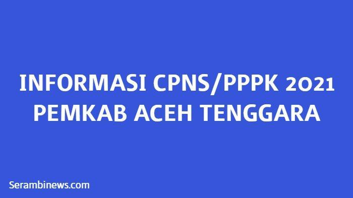 Pemkab Aceh Tenggara Hanya Buka Pendaftaran PPPK Guru, Berikut Rincian dan Jadwal Lengkapnya