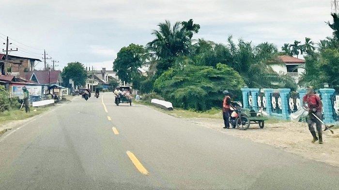 Pekerja Pemotong Rumput di Jalan Tapaktuan-Banda Aceh Masih Gunakan Mesin Bermata Pisau