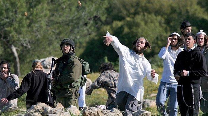Makin Brutal, Pemukim Israel Serang Warga Palestina yang Melawan saat Tanahnya Dicaplok