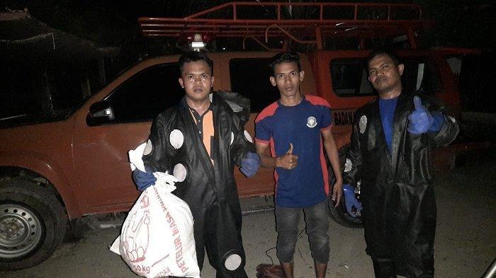 Pemusnahan Sarang Tawon Telan Korban, Seorang Petugas Damkar Aceh Besar Disengat