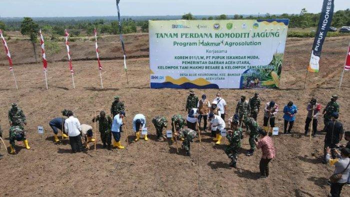 Korem 011/LW Tanam 100 Ha Jagung di Alue Keureunyai, Gandeng Pemkab, PIM, Makmur Agro & Distan Aceh