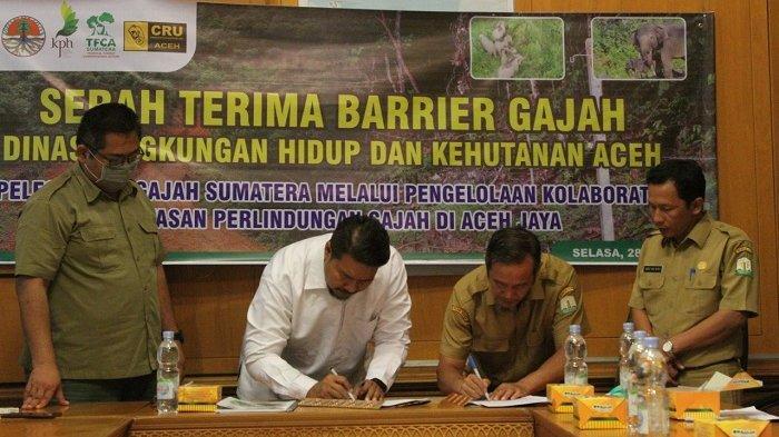 Pemerintah Aceh Terima Barrier Gajah
