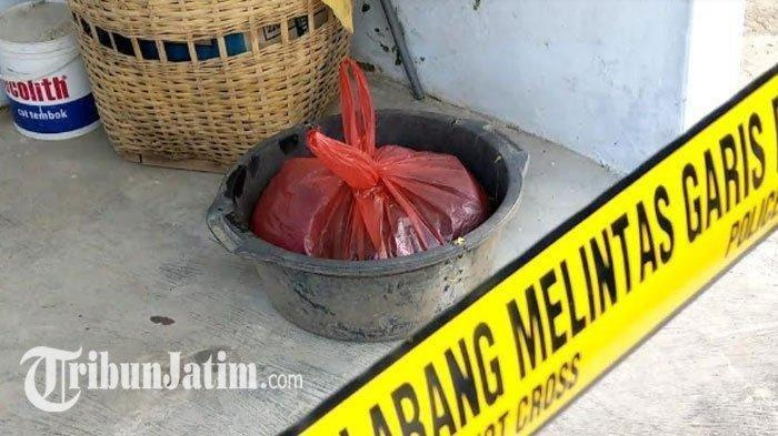 Kakek Cium Bau Busuk di Kamar Cucu, Dikira Bangkai Tikus, Ternyata Mayat Bayi dalam Kantong Plastik