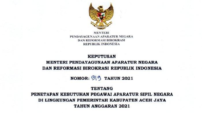 Ada 435 Formasi CPNS & PPPK di Pemkab Aceh Jaya, 20 Formasi untuk Tenaga Teknis, Berikut Rinciannya