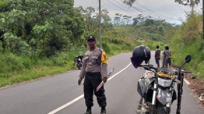 Akibat Penggiringan Gajah Liar, Akses Jalan Bireuen-Takengon Dialihkan Sementara