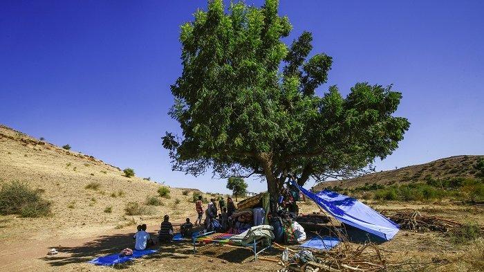 Ribuan Warga Ethiopia Melarikan Diri dari Kekerasan Etnis, Cari Suaka di Sudan