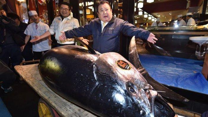 Termahal Sedunia, Seekor Ikan Tuna Terjual Seharga Rp 44,9 Miliar