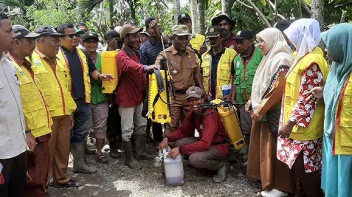 Abusyik Gencarkan Organik Semprotkan Hasil Racikannya Ke Tanaman Coklat Serambi Indonesia